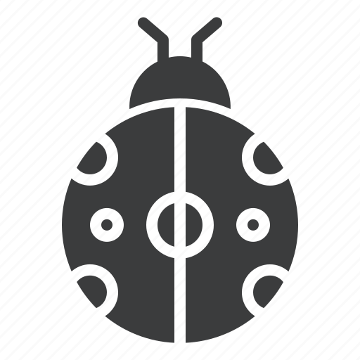 autumn, bug, fall, insect, ladybug, spring icon