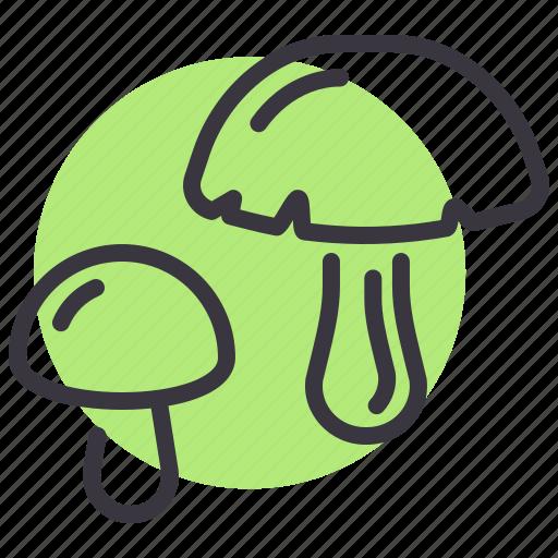fungus, grow, healthy, mushroom, plant, shroom, vegetable icon