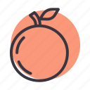 autumn, food, fruit, healthy, orange, peach, spring icon
