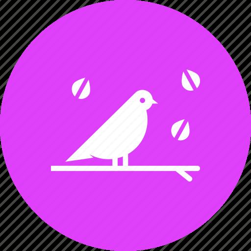 autumn, bird, cute, fall, season, spring icon