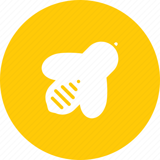 apiary, bee, honey, insect icon