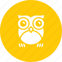bird, halloween, horror, night, nocturnal, omen, owl