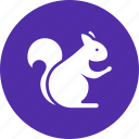 animal, autumn, squirrel icon