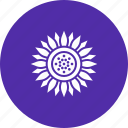 blossom, chrysanthemum, daisy, flower, spring, sunflower, thanksgiving icon