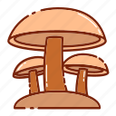 autumn, mashroom, vegetable icon