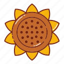 autumn, fall, flower, nature, plant, sun icon