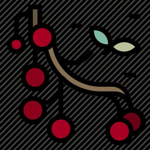 berry, food, fruit, healthy, organic, vegan icon