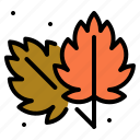 autumn, leaf, nature, plant, weather icon