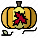 autumn, food, fruit, healthy, organic, pumpkin, vegetarian icon