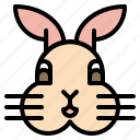 animal, pet, rabbit, wildlife icon