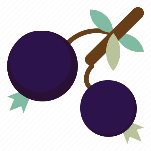 blueberries, dessert, food, fruit, healthy icon