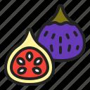 autumn, fall, fig, food, fruits, harvest, tree