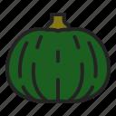 autumn, food, harvest, kabocha, pumpkin, squash, vegetable icon
