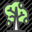 autumn, deciduous, leaf, leaves, tree, trees