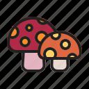 autumn, fall, mushroom, plant icon