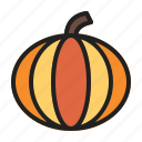 autumn, fall, pumpkin, vegetable icon