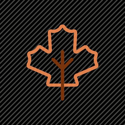 autumn, leaft, winter icon