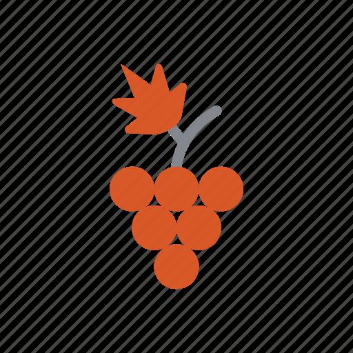 animal, autumn, food, grape, holiday, leaf icon