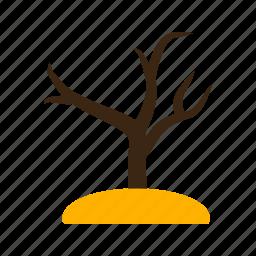 autumn, beautiful, fall, leaf, nature, season, tree icon