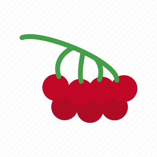 berries, berry, fresh, fruit, healthy, nature, red icon