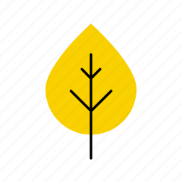 autumn, birch, fall, leaf, leaves, nature, tree icon