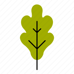 autumn, fall, leaf, leaves, nature, oak, tree icon