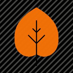 autumn, fall, leaf, leaves, linden, nature, tree icon