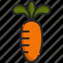 carrot, diet, food, healthy, organic, vegan, vegetarian
