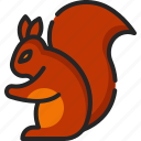 squirrel, animal, life, rodent, wild, zoo