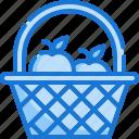 basket, food, fruit, garden, harvest, natural