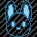 rabbit, bunny, animal, easter, cute, pet, nature