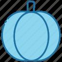 pumpkin, halloween, vegetable, food, healthy, nature, autumn