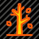 autumn, dried, fall, pine, tree, trunk, wood