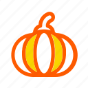 autumn, fall, food, halloween, harvest, pumpkin, vegetable icon