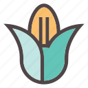 autumn, corn, fall, food, gastronomy, grow, healthy icon
