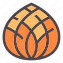 autumn, cone, decorate, fall, forest, nature, pinefruit icon