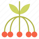 berries, blackberry, brambleberry, food, fresh, fruit icon