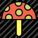 autumn, food, mashroom, nature, vegetable icon