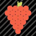 grape, juice, fruit, grapes, organic, flavor