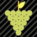 flavor, fruit, grape, grapes, juice, organic icon