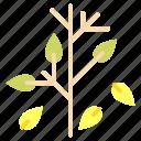 leaf, lettuce, vegan, veganism, vegetable, vegetarian icon
