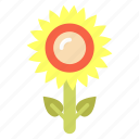 decoration, flower, gardening, organic, plant, sunflower icon