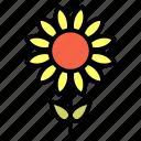 floral, flower, garden, seed, sun, sunflower