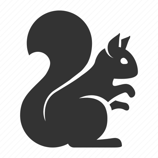 animal, autumn, pet, small gong, spring, squirrel, wild icon