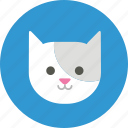 user picture, avatar, animal, cat, user