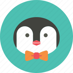 account, animal, avatar, face, penguin, profile picture, user icon