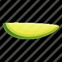 avocado, food, fruit, leaf, nature, piece