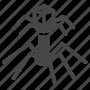 bacteria, bacteriophage, complex, epidemiology, germ, pathogen, virus icon