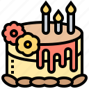 birthday, cake, candles, cerebrate, confectionery icon