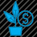 blue, grown, market, money, online, seo icon